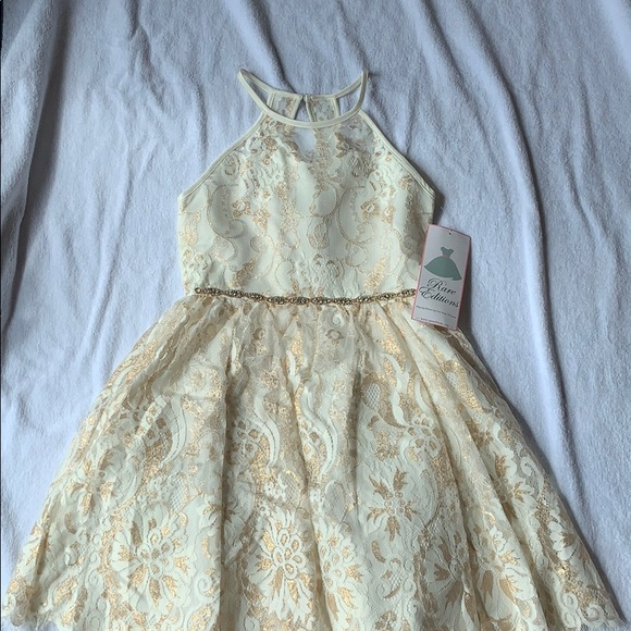 Rare Editions Other - NWT girls Rare Edition dressy lace dress, size 12